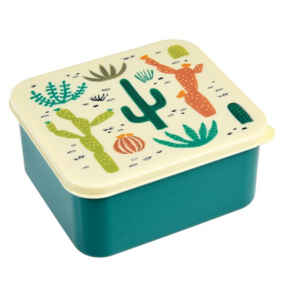 DESERT IN BLOOM LUNCH BOX