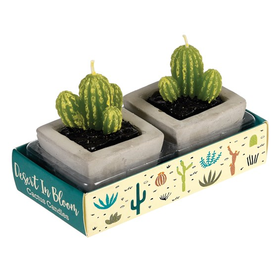 cactus candles in cement pots (set of 2)