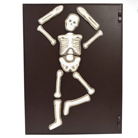 make your own glow in the dark skeleton magnet