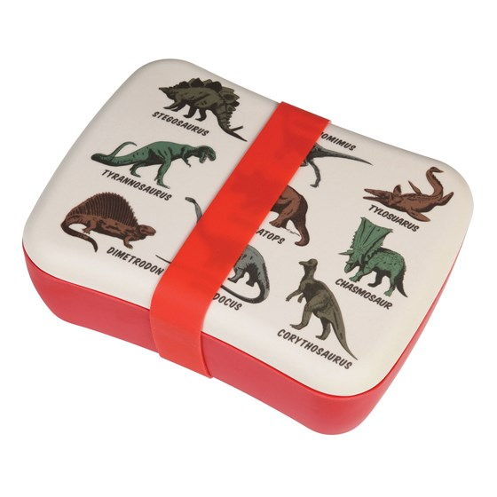 prehistoric land kids bamboo lunch box