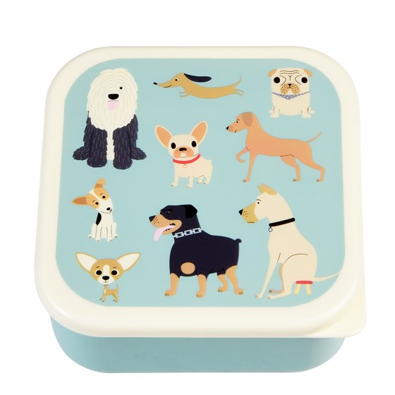 best in show snack boxes (set of 3)