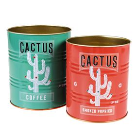 cactus storage tins (set of 2)