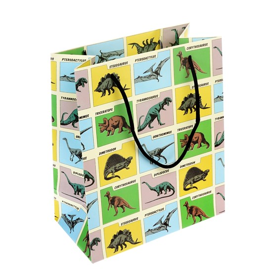 SMALL PREHISTORIC LAND GIFT BAG